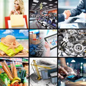 Фискальные аппараты: Cферы бизнеса/назначение